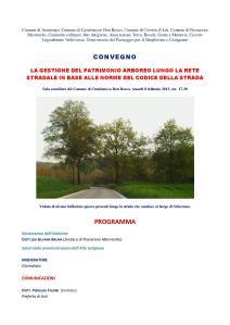 Programma Convegno (Castelnuovo DB 8 02 13)-page-001